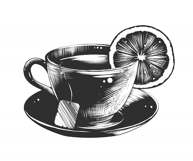 Hand drawn sketch of a cup of tea with lemon