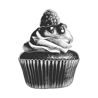 Hand drawn sketch of cupcake in monochrome