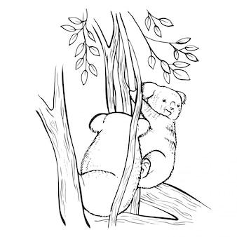 Hand drawn sketch doodle koala bear.