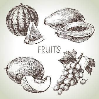 Hand drawn sketch fruit set. eco foods.  illustration