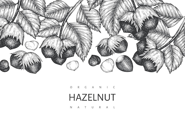 Hand drawn sketch hazelnut design template on white