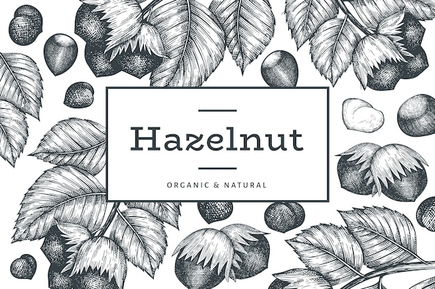 Hand drawn sketch hazelnut design template