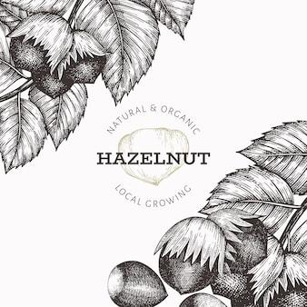 손으로 그린 스케치 헤이즐넛 템플릿입니다. 흰색 배경에 유기농 식품 그림입니다. 빈티지 너트 그림입니다. 새겨진 스타일 식물 배경.