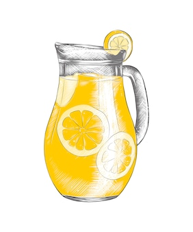 Hand drawn sketch of lemonade in the pitcher
