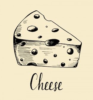 Hand drawn sketch piece of cheese