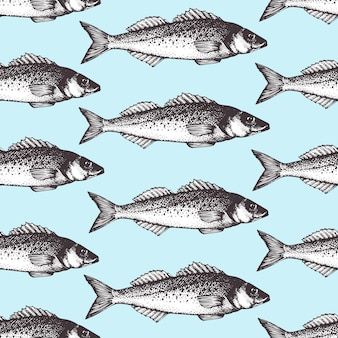 Hand drawn sketch seafood pattern with fish. retro seabass illustration.
