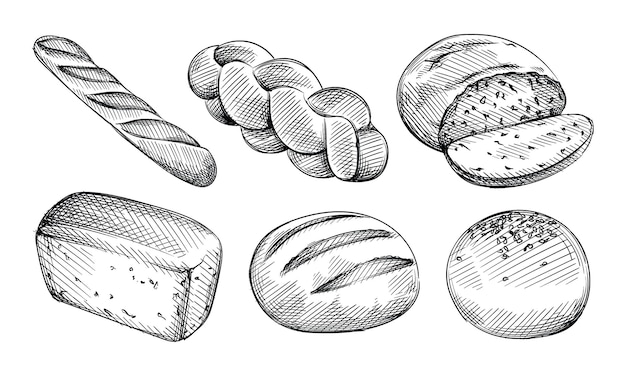 빵 종류의 손으로 그린 스케치 세트입니다. 버거 번, 화이트 샌드위치 빵, 백젤, 잡곡 빵, 할라, 치 아바타