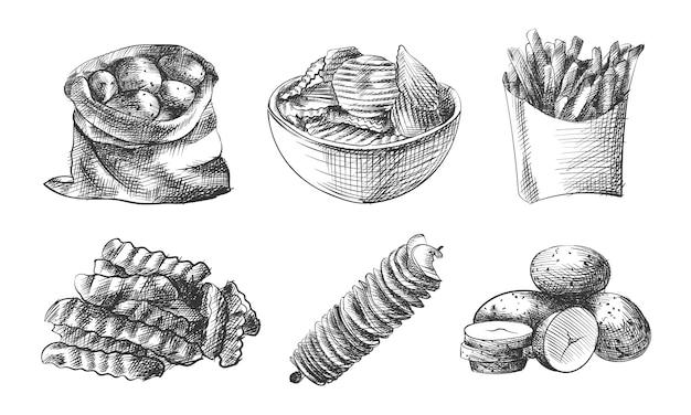 감자의 손으로 그린 스케치 세트입니다. 세트는 가방에 감자, 그릇에 골판지 감자, 감자 튀김, 감자 슬라이스, 나선형 감자, 어린 감자를 포함