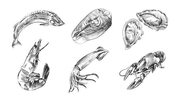 海の食べ物の手描きスケッチセット。セットには、カニ、エビ、ロブスター、ザリガニ、オキアミ、ロブスターまたはイセエビ、ムール貝、カキ、ホタテが含まれます