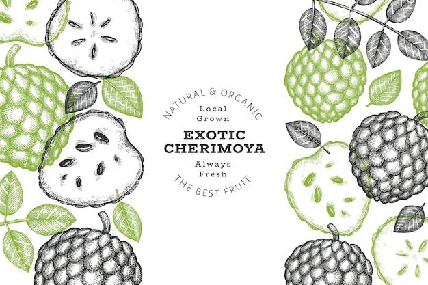 Hand drawn sketch style cherimoya background. organic fresh fruit. engraved style botanical.