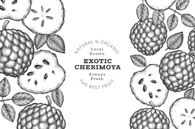 손으로 그린 스케치 스타일 체리모야. 유기농 신선한 과일 그림입니다. 새겨진 스타일 식물 디자인 템플릿입니다.