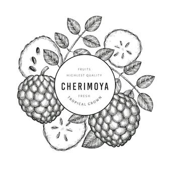 手描きスケッチスタイルチェリモヤ。白い背景の上の有機の新鮮な果物のイラスト。刻まれたスタイルの植物のテンプレート。