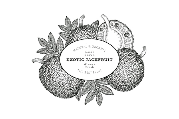 Hand drawn sketch style jackfruit label template