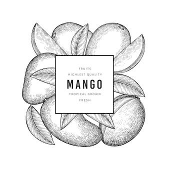 手描きスケッチスタイルのマンゴーバナー。有機の新鮮な果物のイラスト。レトロなマンゴーフルーツテンプレート