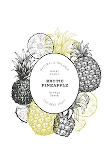 Hand drawn sketch style pineapple label template