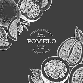 손으로 그린 스케치 스타일 포멜로 배너입니다. 분필 보드에 유기농 신선한 과일 벡터 일러스트입니다. 레트로 과일 디자인 서식 파일