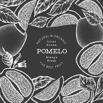 Ручной обращается эскиз стиля помело. иллюстрация органических свежих фруктов на доске мелом.