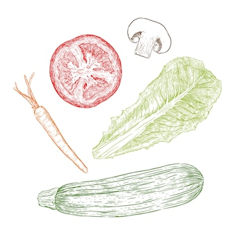 Hand drawn sketch style vegetables set