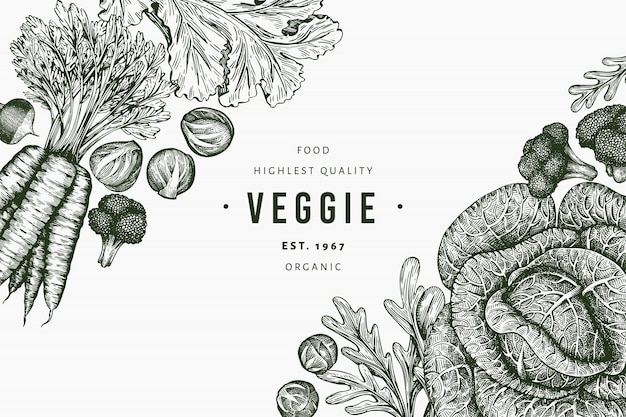 Hand drawn sketch vegetables design. organic fresh food, retro vegetable background. engraved style botanical illustrations.