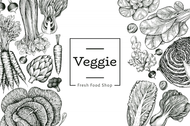 Hand drawn sketch vegetables . organic fresh food   template. retro vegetable background. .