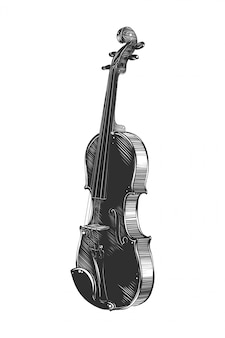 Hand drawn sketch of violin in monochrome