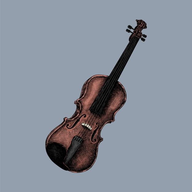 Hand drawn sketch of a violin