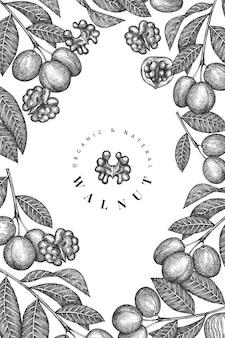Hand drawn sketch walnut design template.
