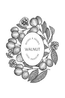 Hand drawn sketch walnut  template. organic food  illustration. retro nut illustration. engraved style botanical background.