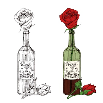 Hand drawn sketched rose in wine bottle