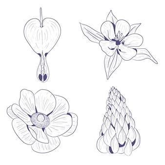Schizzi disegnati a mano di fiori primaverili