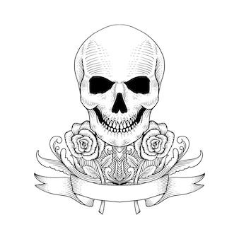 手描きの頭蓋骨とバラ