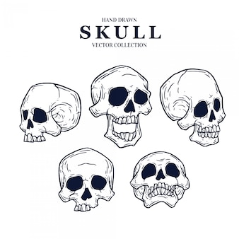 Hand-drawn skull collection