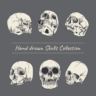 Hand drawn skull illustration