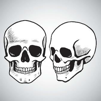 Hand drawn skull set vector