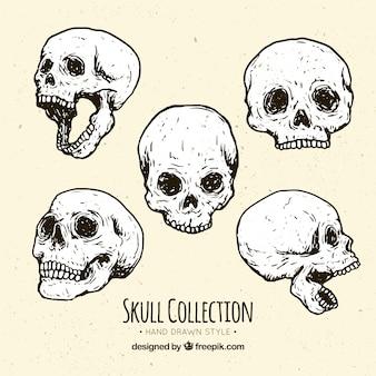 Hand-drawn skulls with fantastic designs