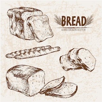 Hand drawn sliced bread