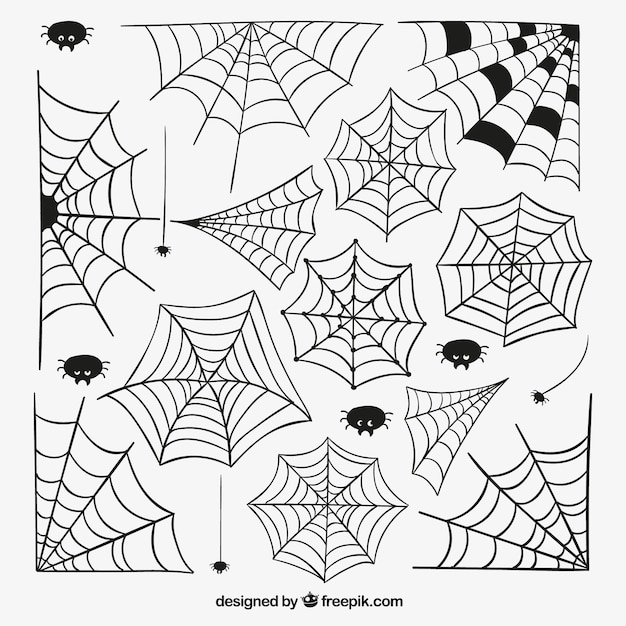 Spiders Web Template