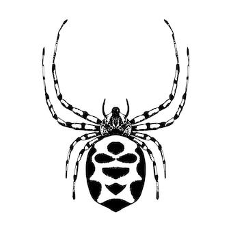 手描きのクモ