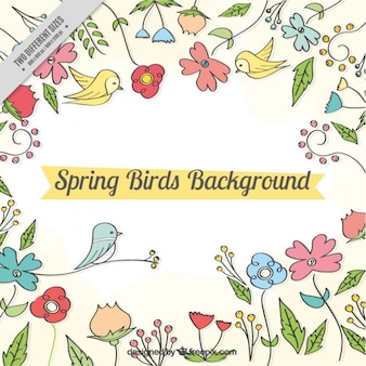 Hand drawn spring background with birds