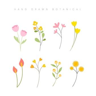 Рисованной весенний ботанический цветок цветочные элементы set иллюстрация