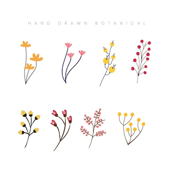 手描き春の植物の花の花のイラスト