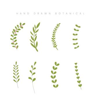 手描き春の植物の葉の葉緑花イラスト