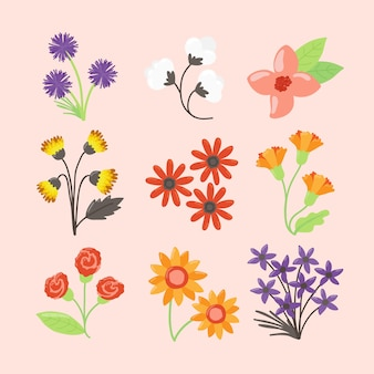 Hand drawn spring flower collection isolated on pink background