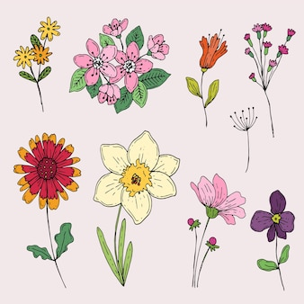 손으로 그린 봄 꽃 모음