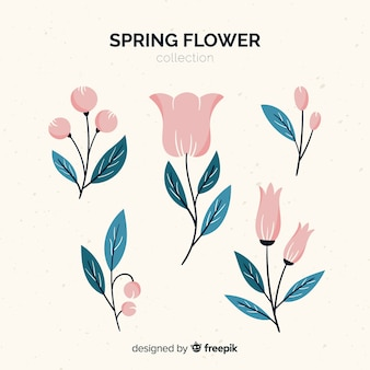 Hand drawn spring flowers collection