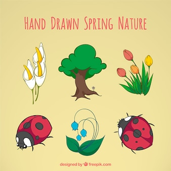Hand drawn spring nature