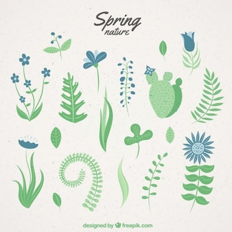 Hand drawn spring nature
