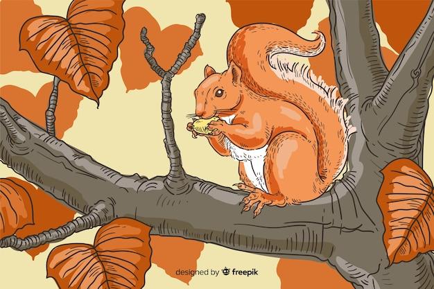 Hand drawn squirrel autumn background
