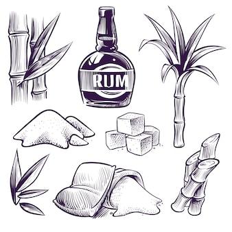 Ручной обращается сахарный тростник. сладкие листья сахарного тростника, стебли сахарного завода, урожай с фермы, ромовый стакан и бутылка. старинная гравюра