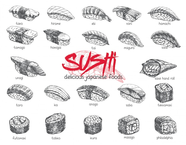 Hand drawn sushi set. japanese food sketch illustration for sushi rolls bar menu, banner, flyer, card and etc.